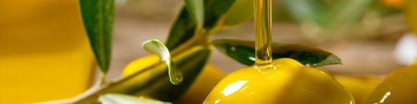 Ouderwerfskloof Farm is a Extra Virgin Olive Oil and Olive Product Producer in South Africa